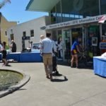 Napier cruise tourist informationi