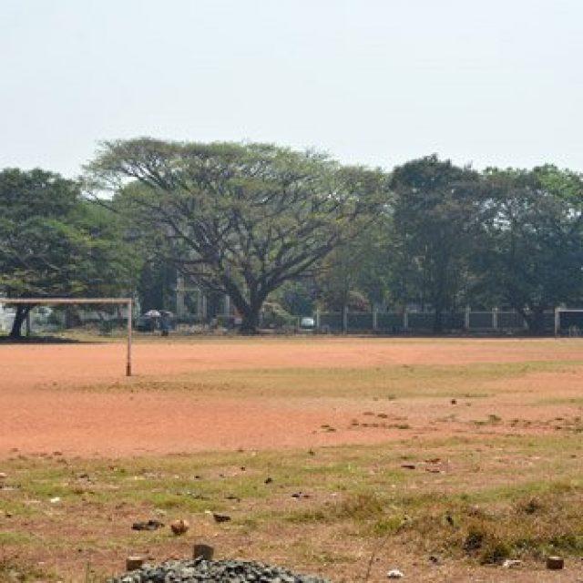 The cricket fields