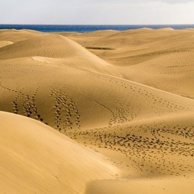 The dunes of Maspalomas