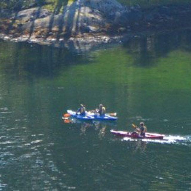 Kayaking in the Ulvikfjord